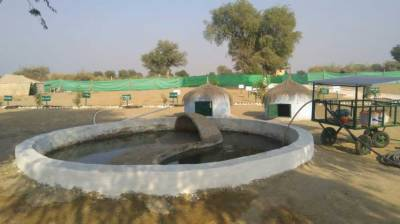 Saline Production Water Filter for Drinking Price - Saline Water Management System for Irrigation